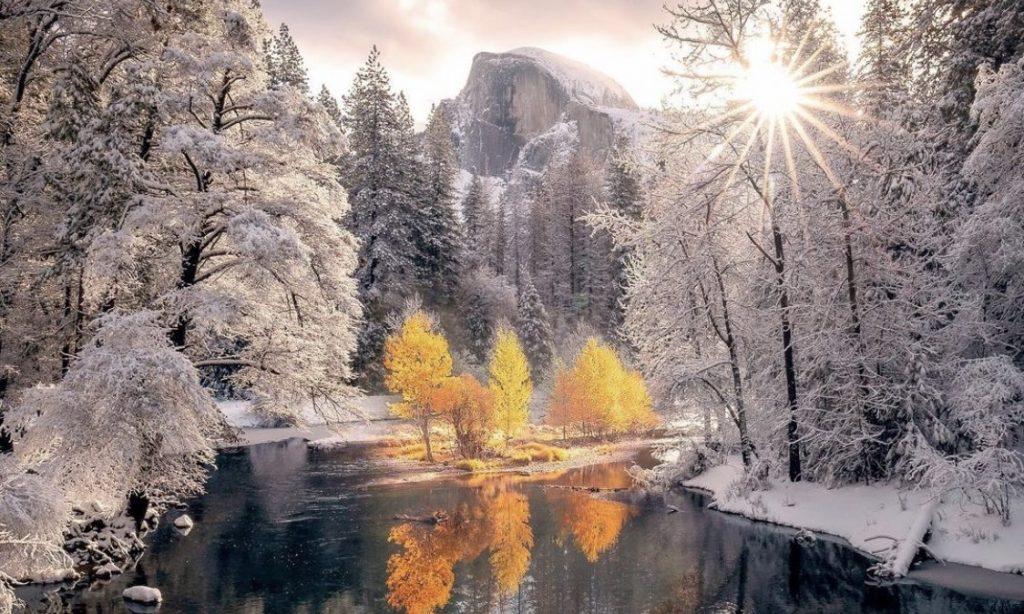yosemite snowliage