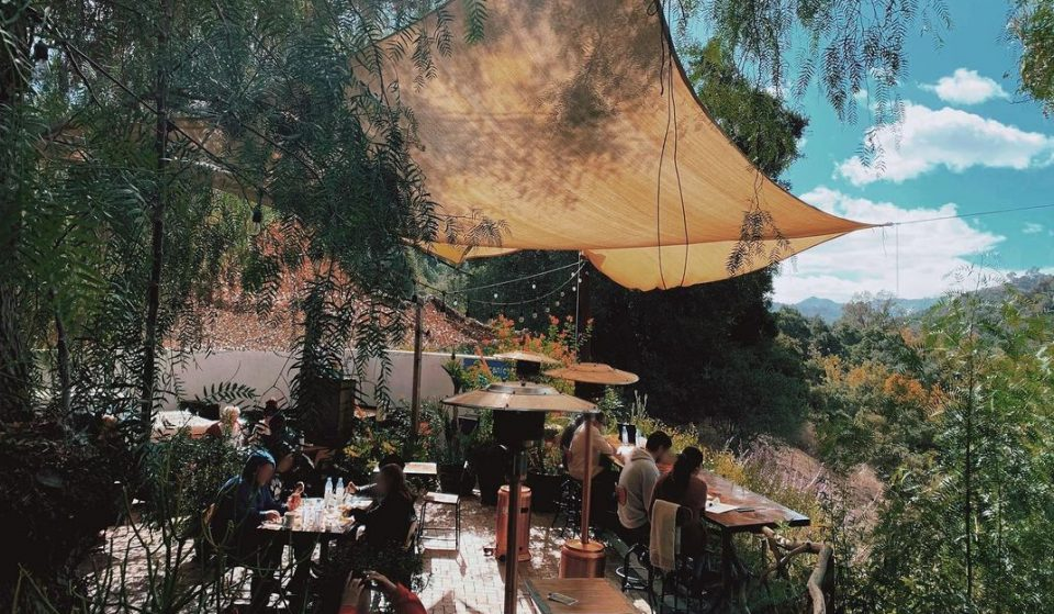This Cafe Perched Amongst The Treetops In Topanga Serves Up Wholesome Food And Lush Views