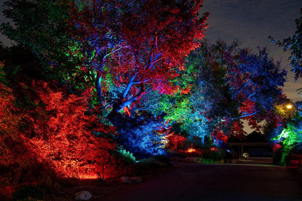 This Palos Verdes Botanic Garden Has Been Turned Into An Enchanting Multisensory Haven For The Holidays