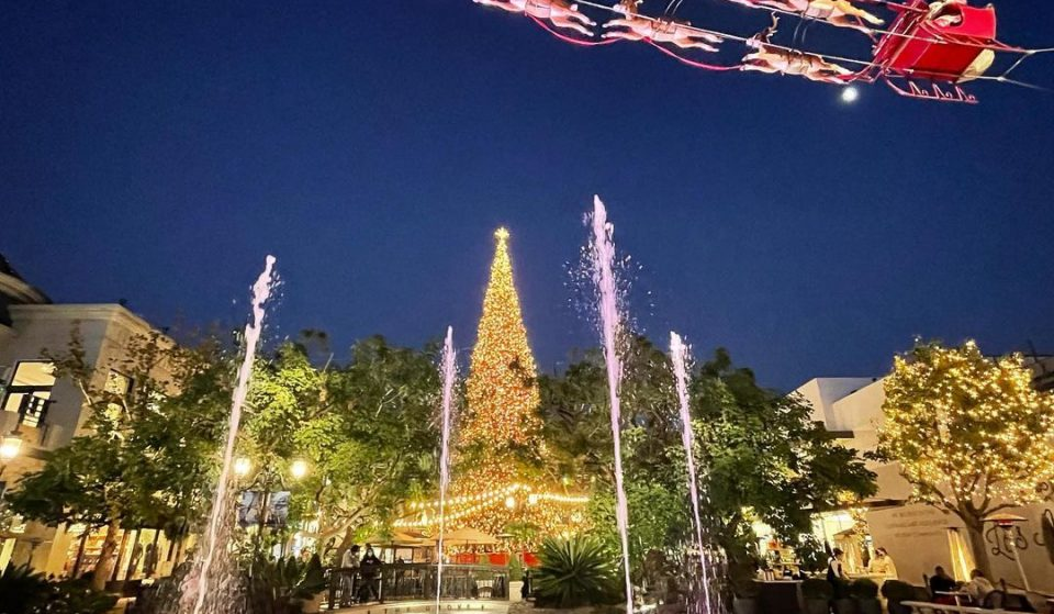 Where To Get A Real Christmas Tree In L.A. (Copy)