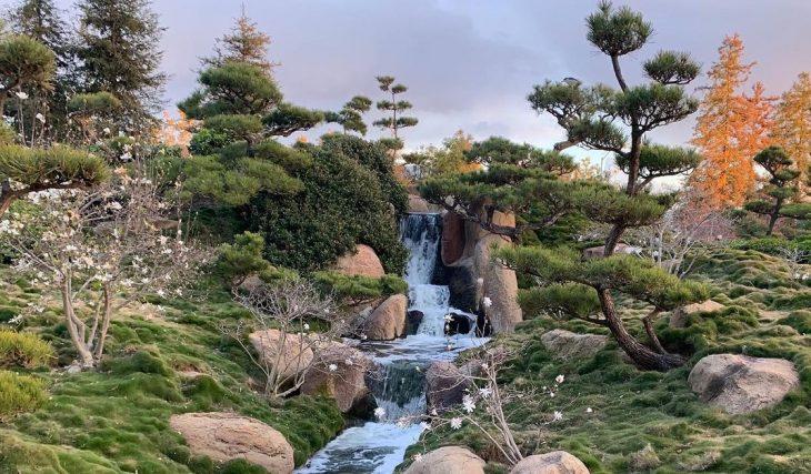 11 Hidden Gardens That Offer A Lush Escape Around L.A.