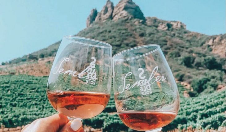 Wine And Hike Through A Historic Vineyard And See Chumash Cave Paintings