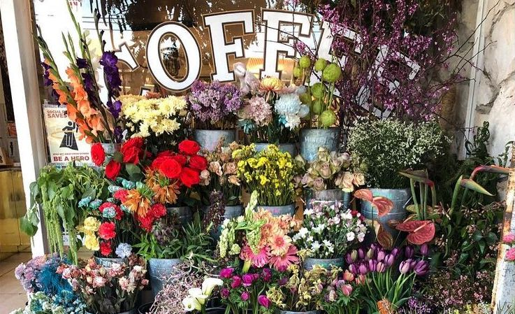 9 Places To Buy Beautiful Flowers Around Los Angeles