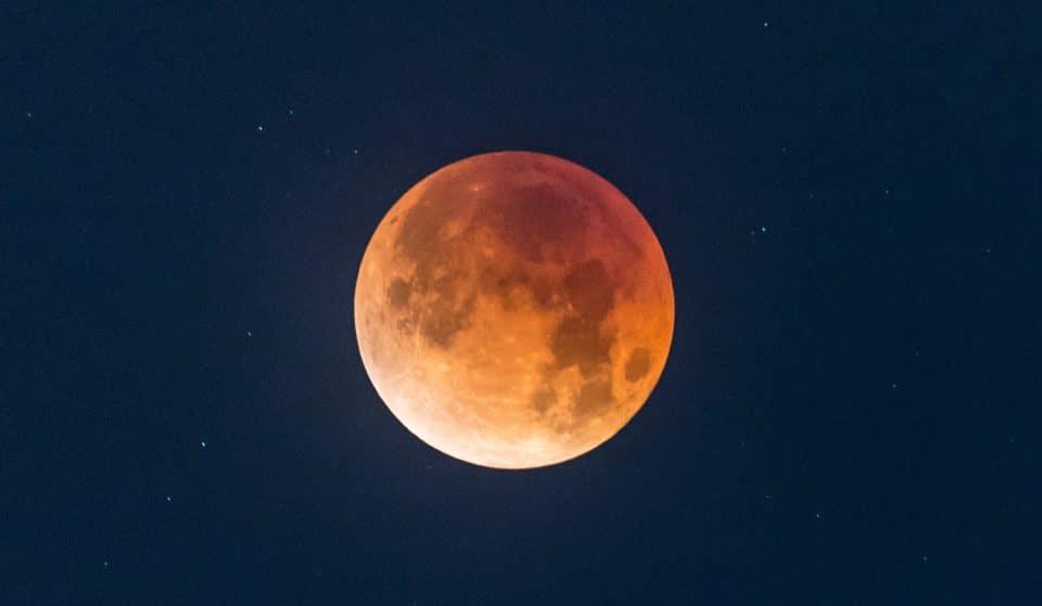 This Rare 'Super Flower Blood Moon' Eclipse Happens Next Week