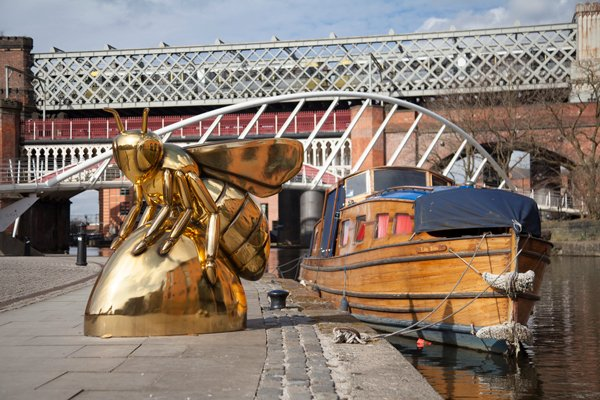 Manchester Will Be Overrun With Giant Bees This Summer
