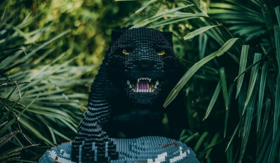 A Pride Of Life-Size Big Cats Made From Lego Will Pop Up At Chester Zoo