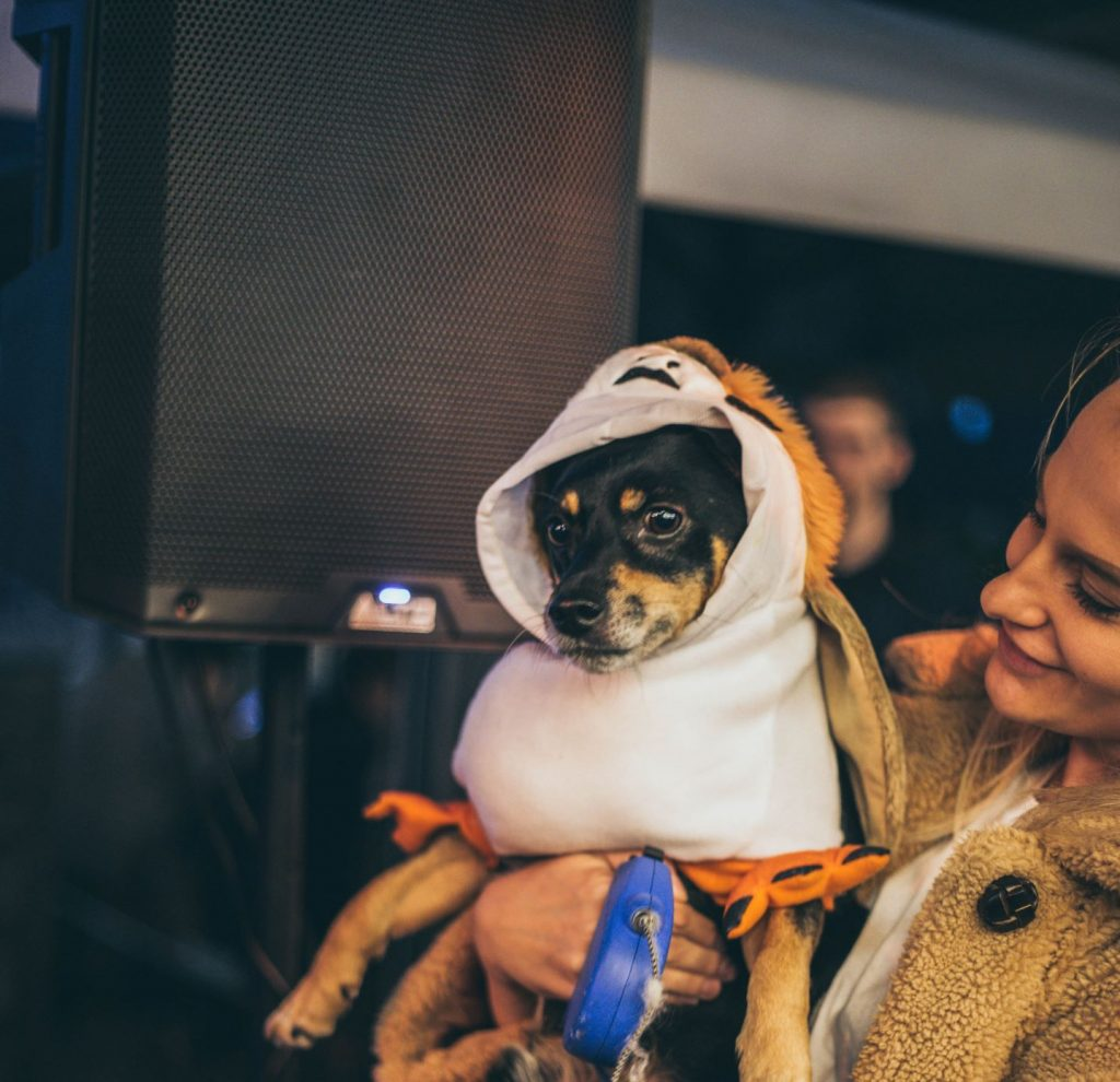 A Fancy Dress Halloween Party For Dogs Is Happening In Manchester This Weekend