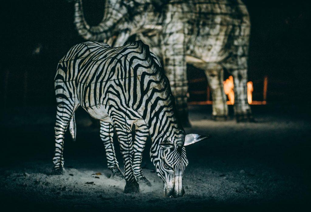 Chester Zoo Lantern Festival Has Returned For Christmas