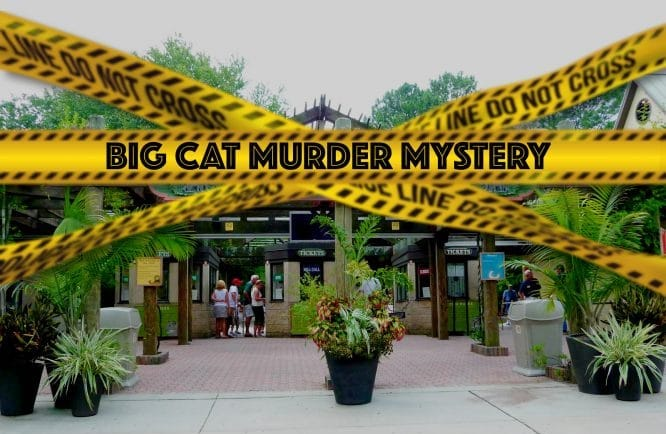 Investigate A Crime At The World's Wackiest Zoo In This Wild Online Murder Mystery