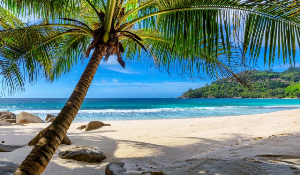 A New Scheme Where You Can Remote Work From Barbados For A Year Has Officially Launched