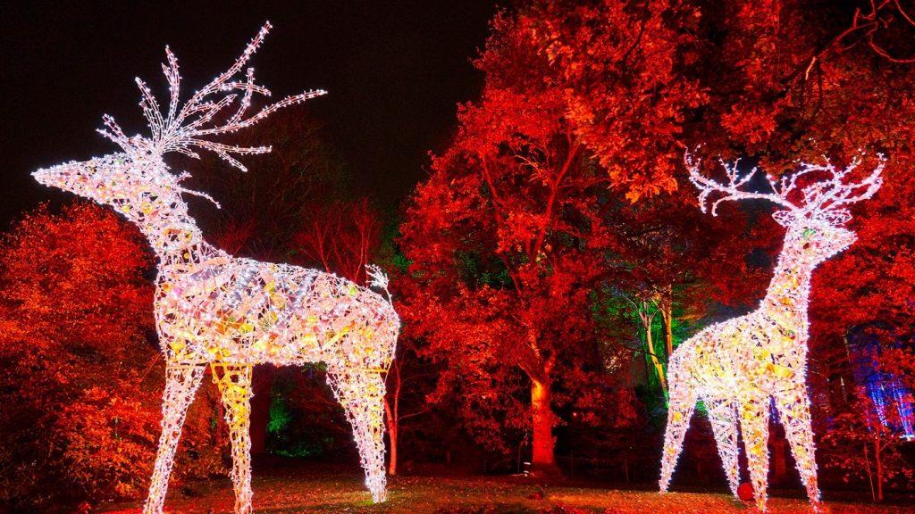 Dunham Massey Is Bringing Back Its Festive Illuminated Christmas Light Trail This Year