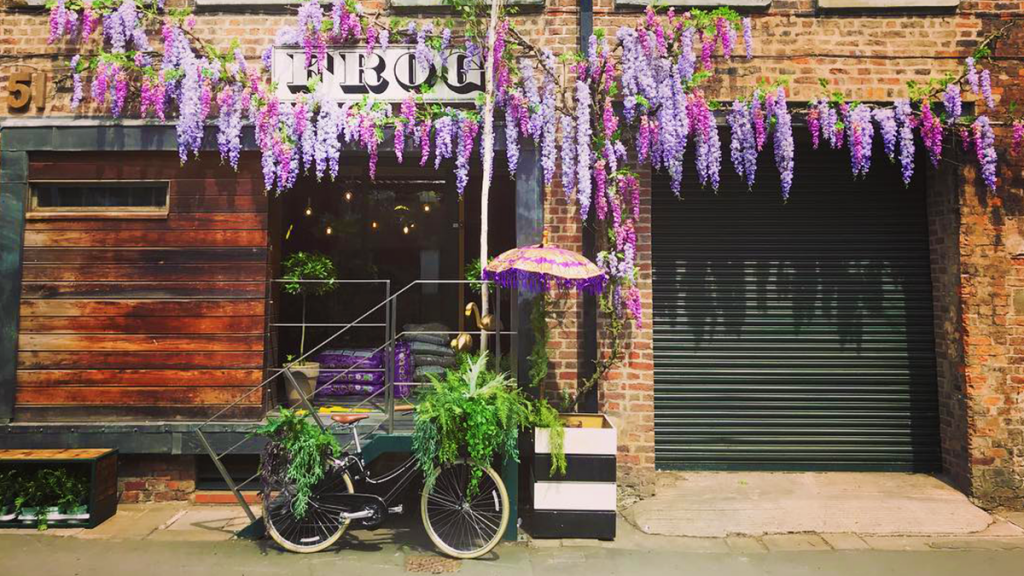 5 Of The Best Shops In Manchester To Feed Your Plant Obsession