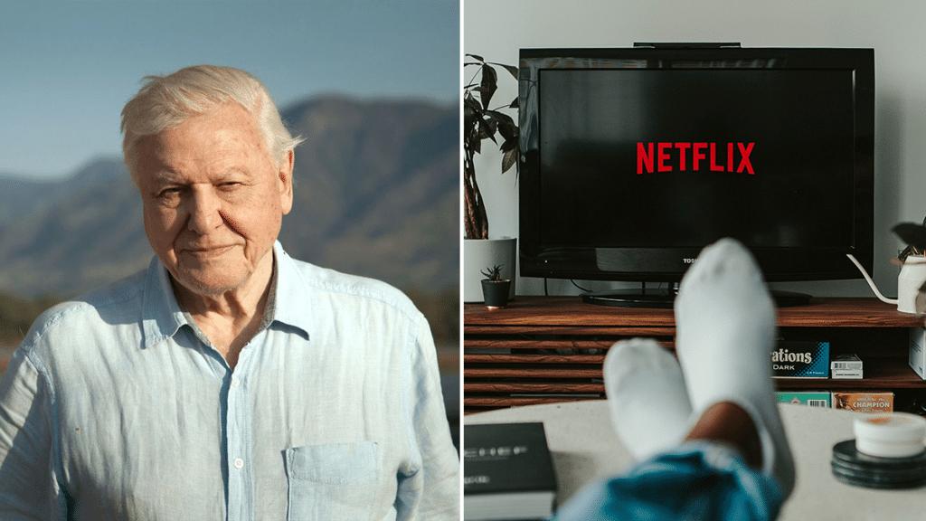 Watching David Attenborough Documentaries Can Reduce Stress, Study Shows