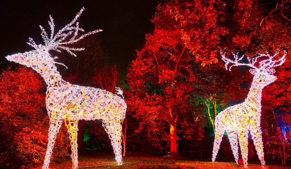 Where To See Twinkling Christmas Lights In And Around Manchester This Month