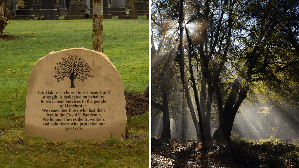 Trees Are Being Planted Across Manchester In Honour Of The City's COVID-19 Victims