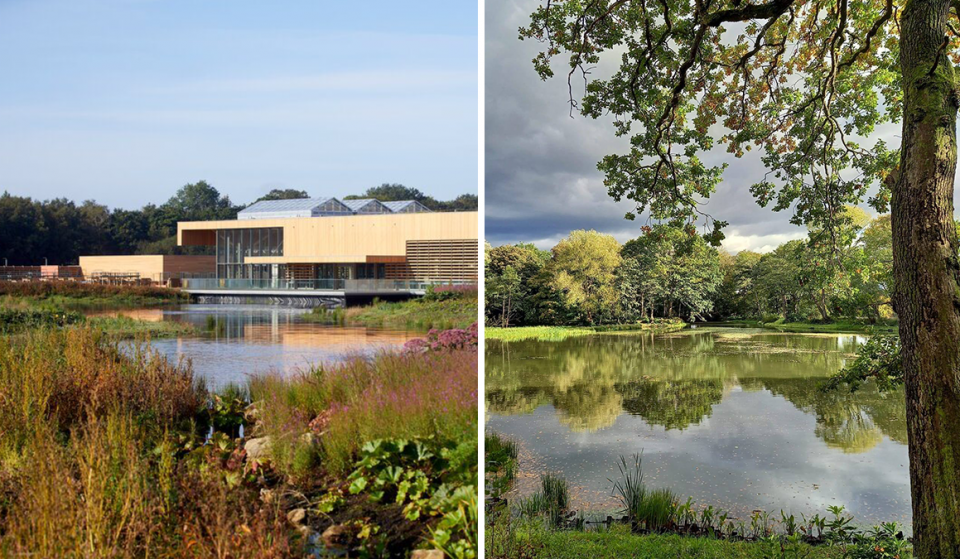 A Stunning New RHS Garden Full Of Spring Blooms Is Opening In Salford This Month