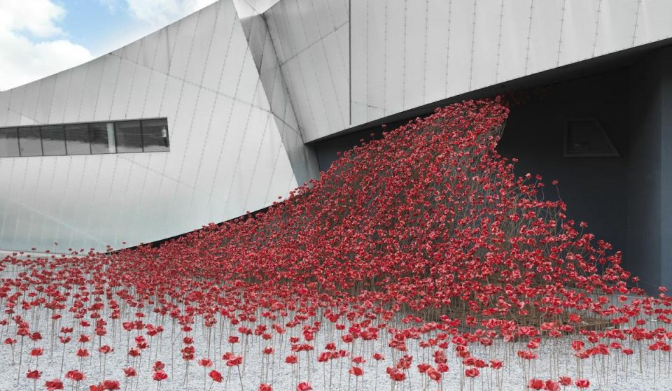 The Striking Poppy Installation From The Tower Of London Has Found A Home In Manchester