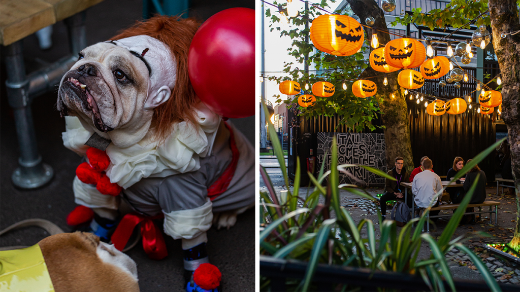 Hatch Is Hosting A Fun Halloween Party For Dogs With Doggy Market Stalls & Dress Up Competitions