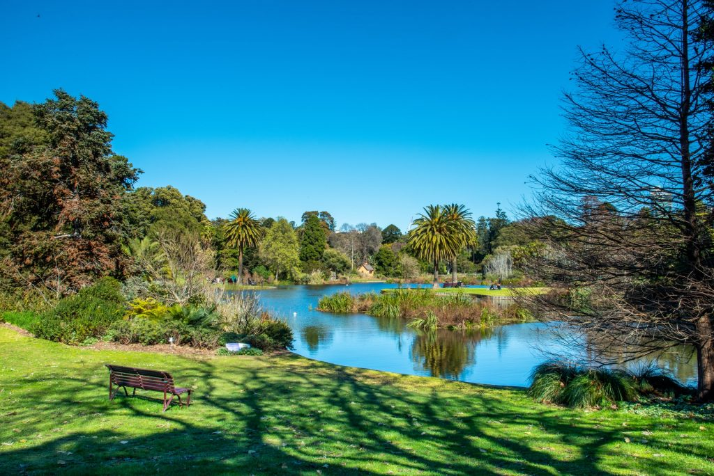 Victoria's Royal Botanic Gardens Will Begin Reopening From This Weekend