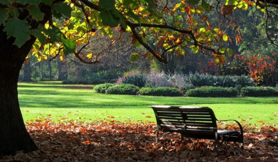 8 Melbourne Parks And Gardens You Just Got To Visit