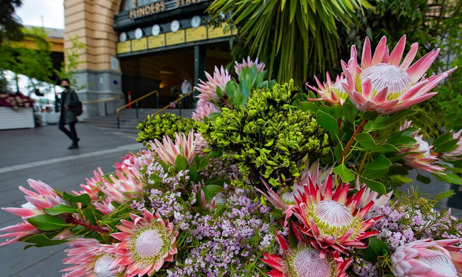 You Have One More Week To Check Out The Urban Blooms Decorating The City