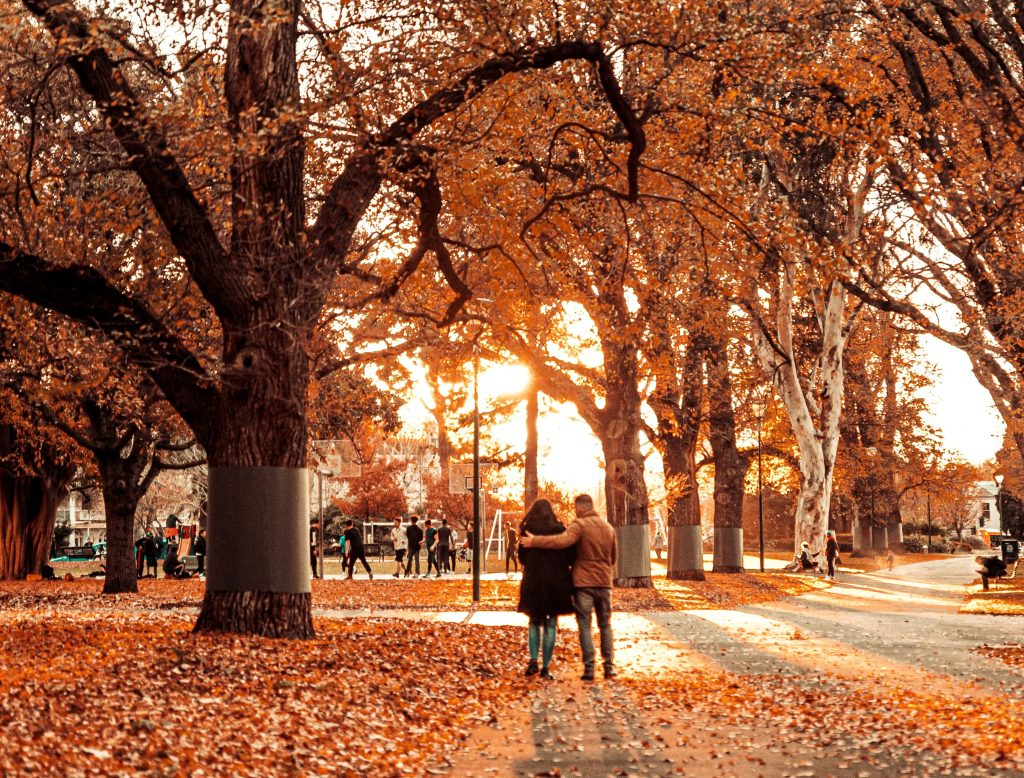 17 Photos Of Melbourne Looking Awesome In Autumn And Where To See It For Yourself