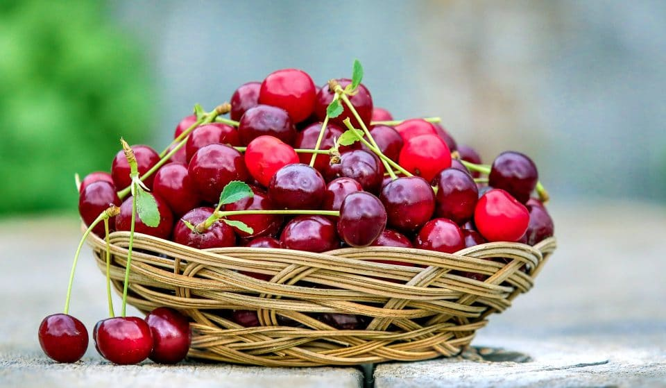 Journey Along The Victorian Cherry Trail For The Ultimate Cherry Experience