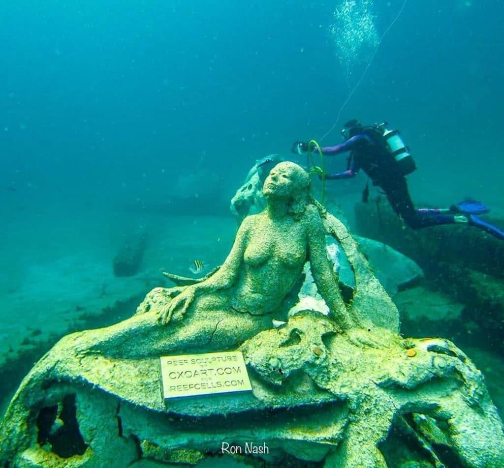 1000 Mermaids
