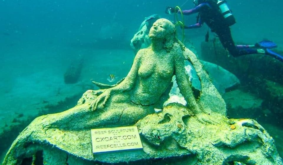 Dive Into A Mesmerizing Mermaid World At This Underwater Art Gallery in West Palm Beach
