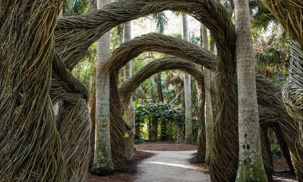 Step Into A Fairytale Land Of Green At This Botanical Garden In Vero Beach