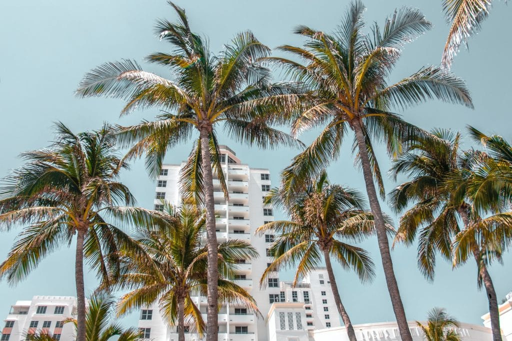 20 Incredible Free Things To Do In Miami Right Now