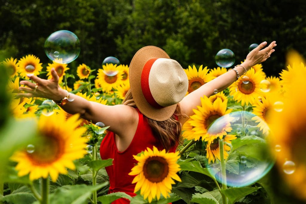 Get Lost In A Stunning Sunflower Field At This Farm Just Outside Miami