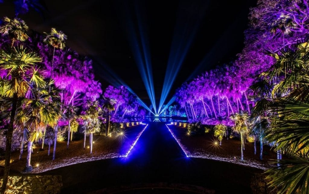 Fairchild's Magical Holiday Lights Show Is Returning Next Month!