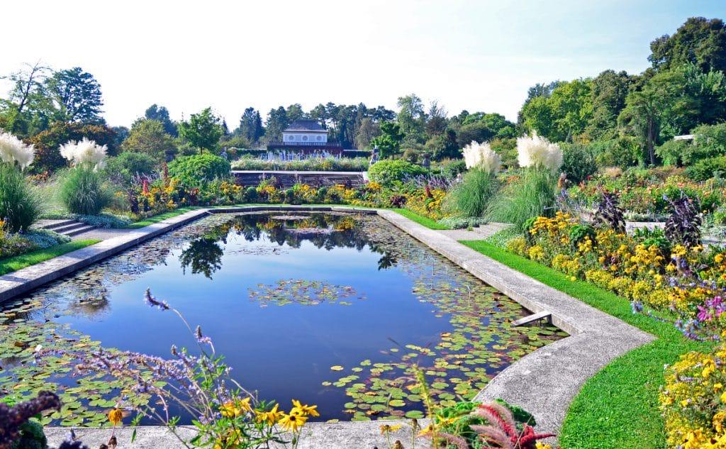 Der Botanische Garten öffnet wieder