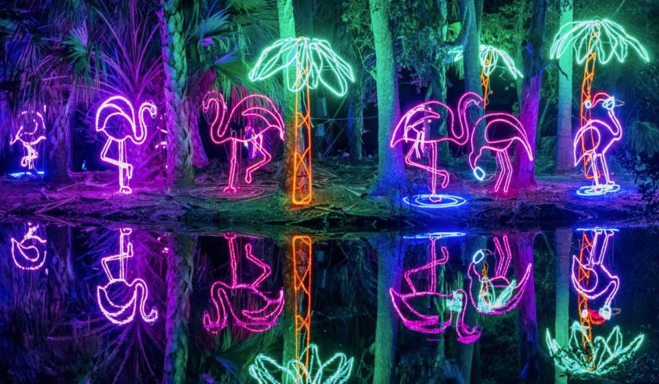 Celebration In The Oaks' Spectacular Light Display Closes Next Sunday