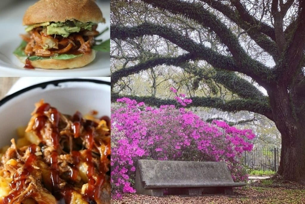 Have A Blooming Delicious Dinner At New Orleans' Enchanting Botanical Gardens