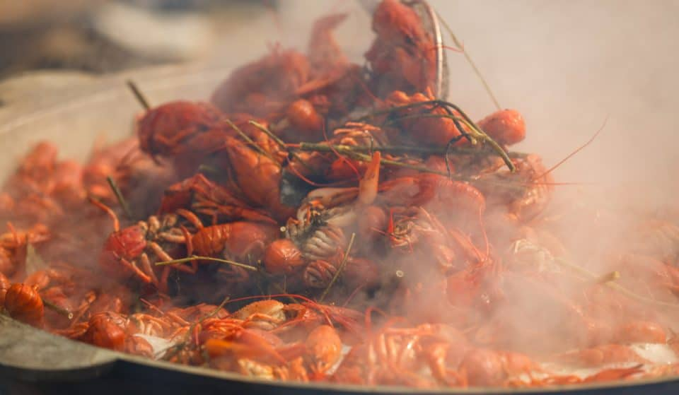 The 45th Annual Louisiana Crawfish Festival Is Happening This Weekend