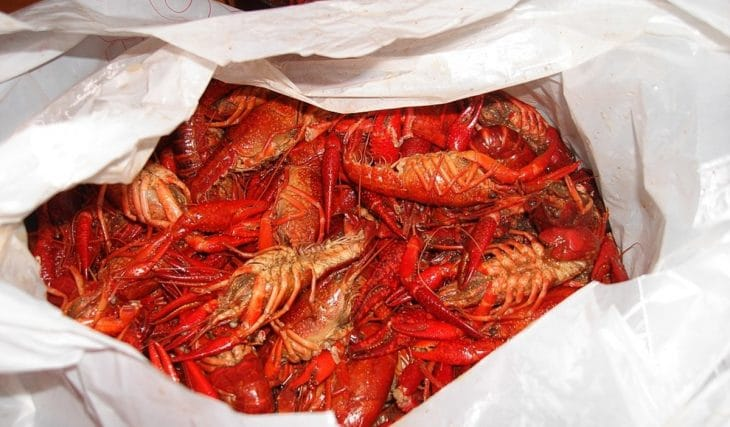 Get A Free Pound Of Crawfish In NOLA Tomorrow With Your COVID Vaccine