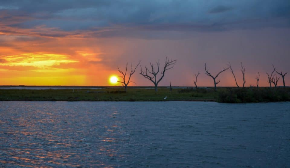 Louisiana Coast Will Receive A Major Makeover As More Restoration Is Confirmed