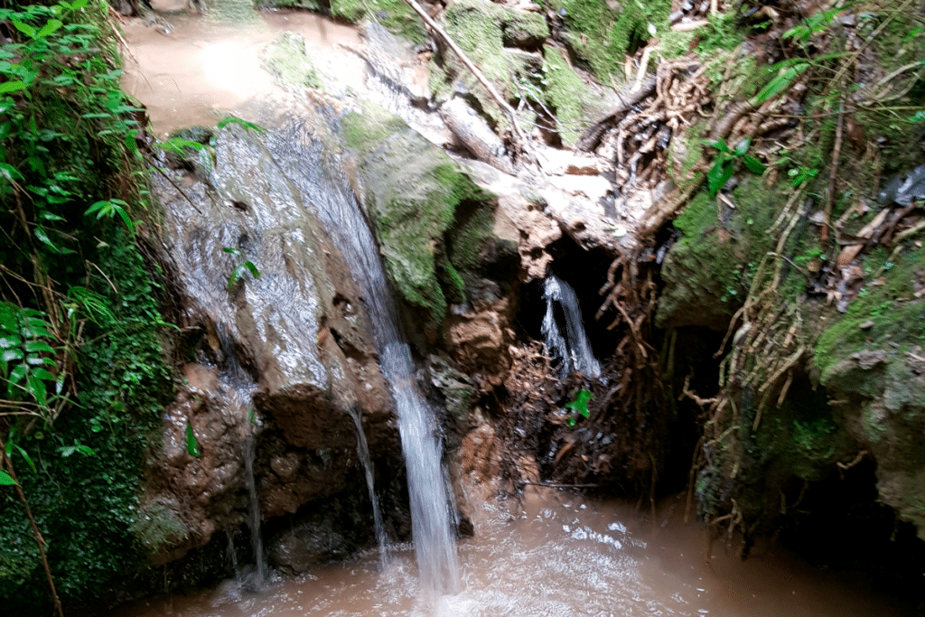 3 Waterfalls Near New Orleans That Will Make You Forget The Summer Heat