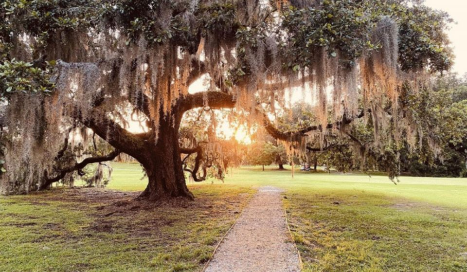 8 Best Sunset Spots In New Orleans