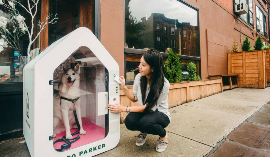 Would You Park Your Dog In This Ostentatious Crate For Cash?