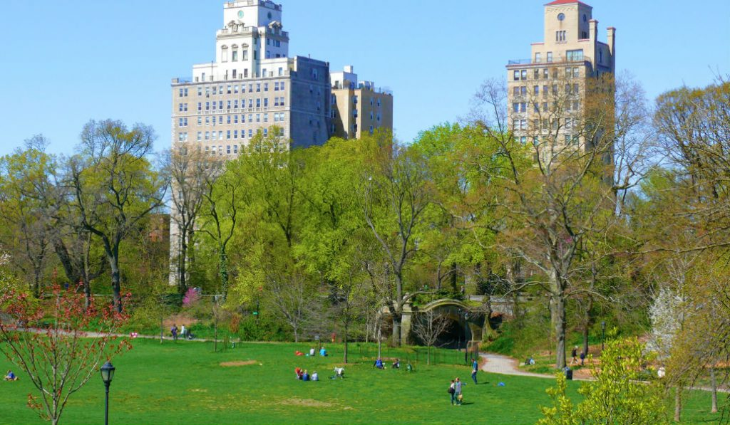 Great News For Brooklyn's Favorite Park, It's going Car-Free!