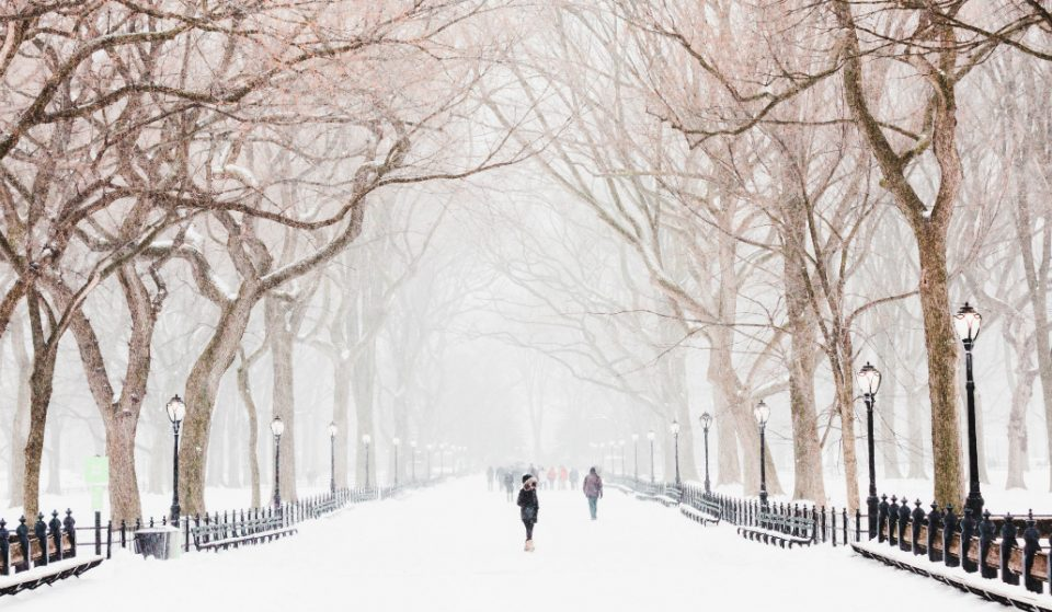 10 Ways to Survive (the Eventual) Snowstorm in NYC
