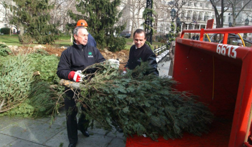 Turn Your Christmas Tree Into Mulch This Weekend At The Annual MulchFest