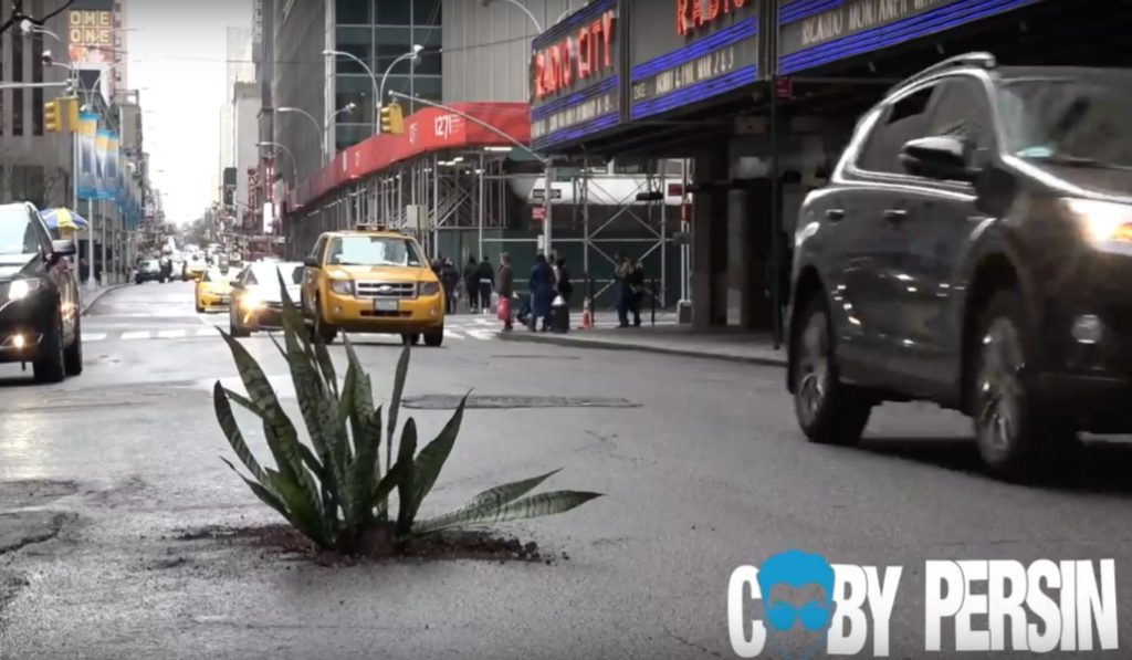 Watch This New Yorker Plant Trees in Potholes Throughout NYC Streets