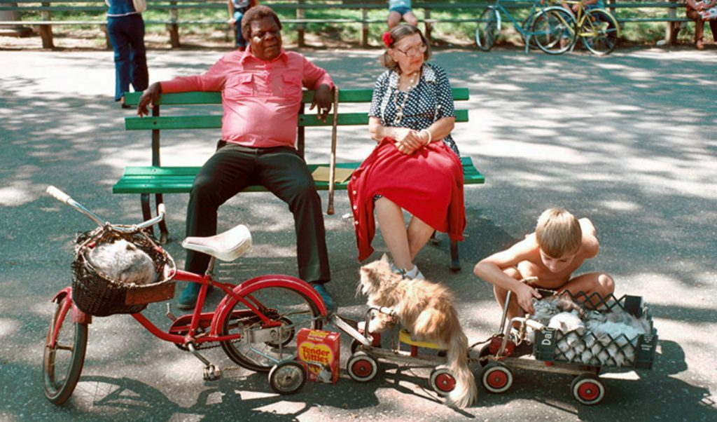 This is What Summer in NYC Looked Like in 1978!