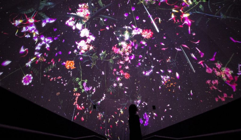 This Psychedelic Art Installation From Japan Is Making It's Way To NYC