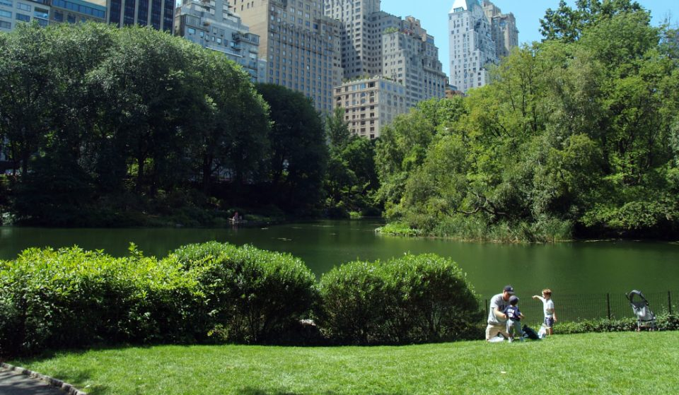 NYC Parks & Rec Is Hosting An Open Garden Day Party This Weekend
