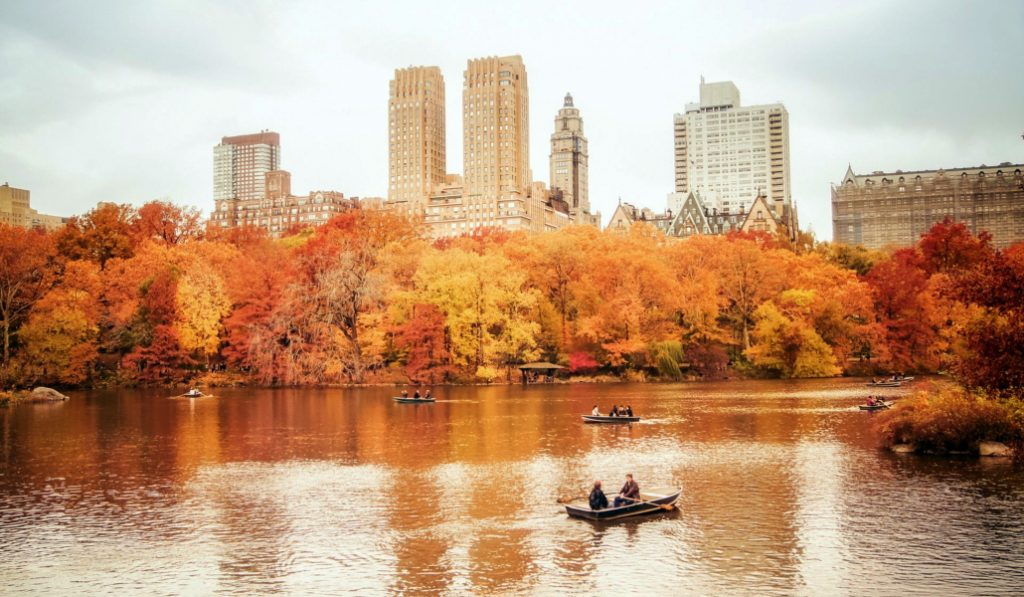 15 Fabulous Things To Do In New York City This November